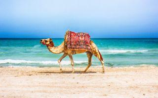 Отпуск в Марокко